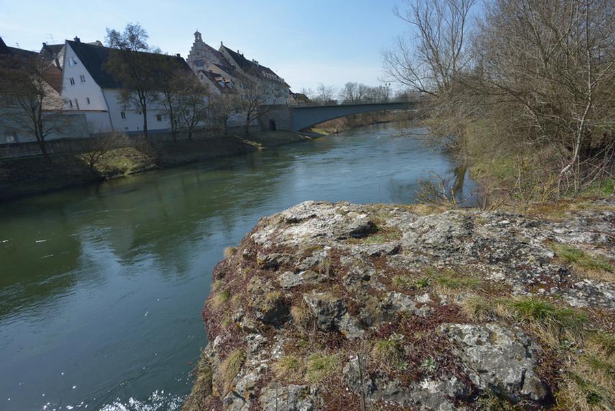 Schwemmstein an der Donau, Foto: Thomas Stephan